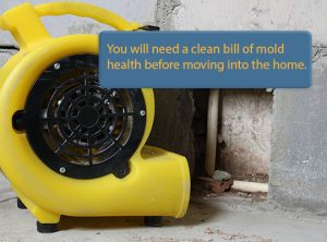 Mold Inspections are one of 8 things your home inspector won't check.